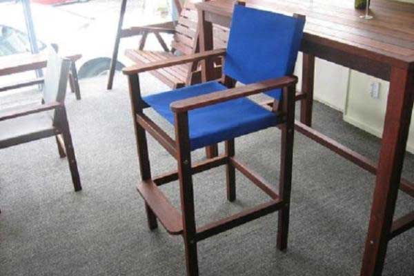 Tall Coaster Canvas Chair